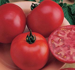 Burpees-Big-Boy-Tomato-Seeds1