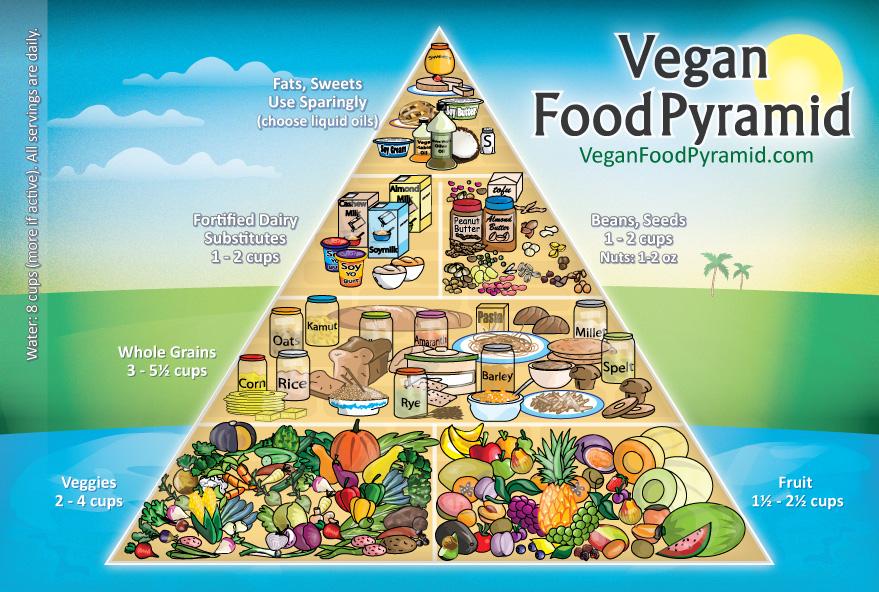 Vegan-Food-Pyramid-New-Joshua-Wold